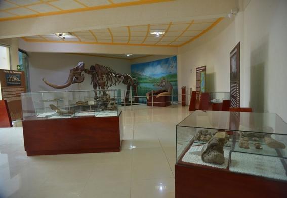 instalan de forma permanente el mamut de tultepec en el municipio 1