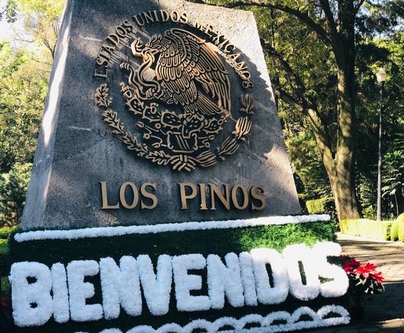 los pinos abren sus puertas a los mexicanos 1