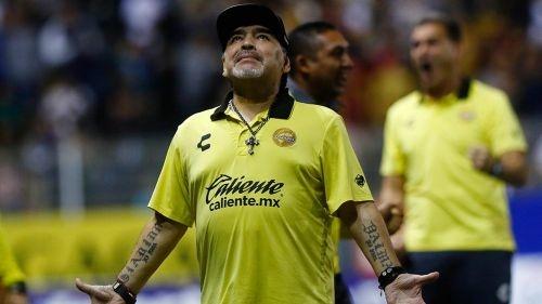 maradona a un paso de obtener su titulo como entrenador de los dorados de sinaloa 1