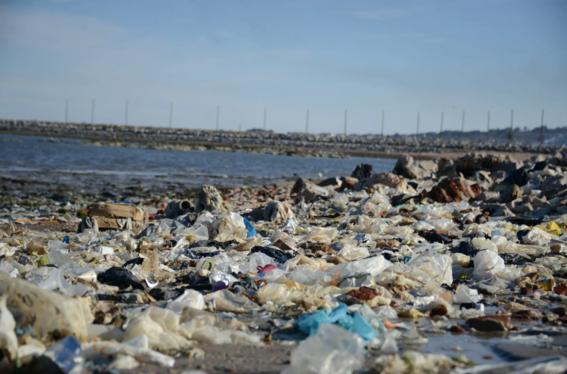 regulacion bolsas plasticas 3