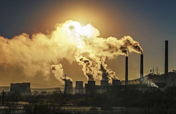 calentamiento global podria desencadenar efecto domino de extincion 2