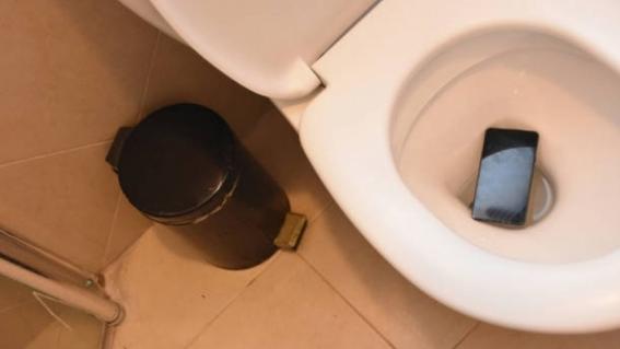 celular tiene siete veces mas bacterias que el inodoro 1