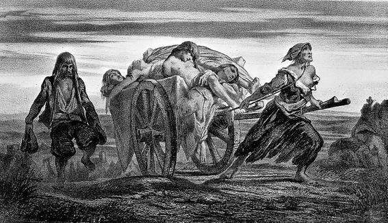 descubren el primer caso de peste en la edad de piedra 2