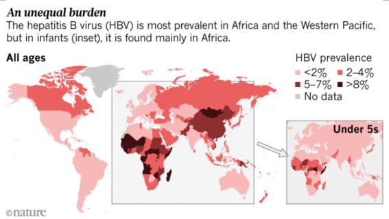 declaran alerta mundial por epidemia silenciosa de hepatitis 4