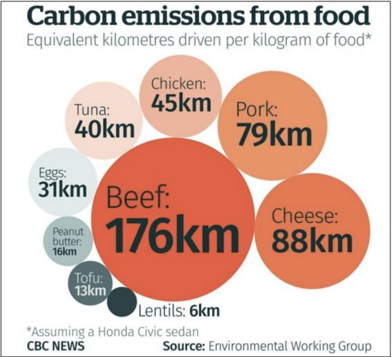 dejar de comer carne tiene efectos positivos en el planeta 3