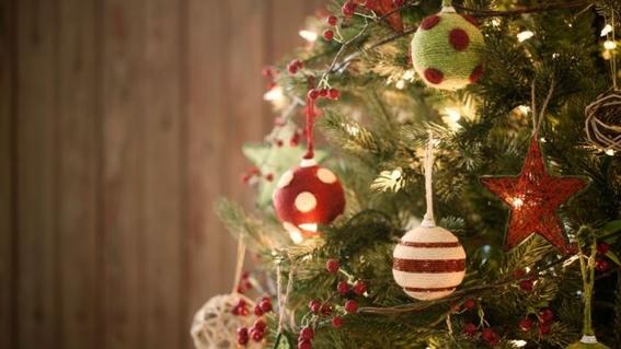 en donde hay centros de acopio para arboles de navidad 4