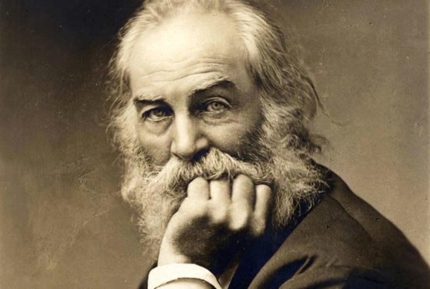 Walt Whitman Las Mejores Frases De Amor Letras