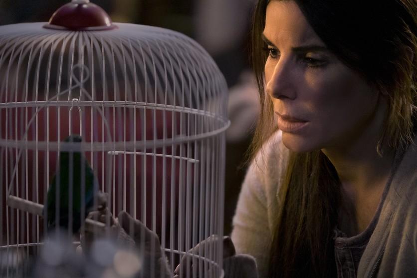 5 razones por las que Bird Box podría ser una copia de A Quiet Place 1