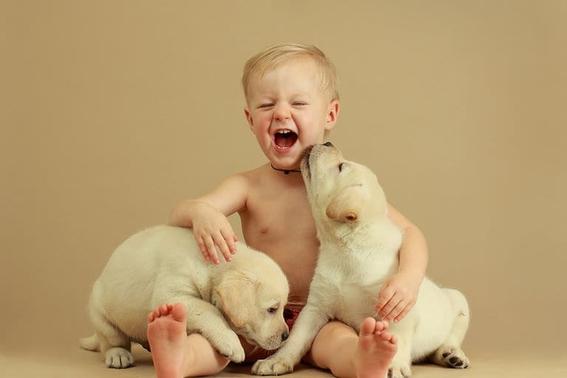 tener mascotas en la infancia ayuda a no desarrollar alergias en la adultez 1