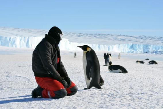 nasa analiza el comportamiento de las nevadas en la antartida 3