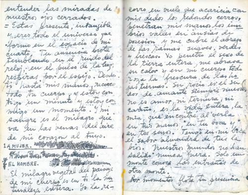 Amor por siempre, Frida Kahlo y Diego Rivera 14