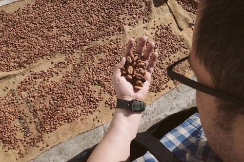 El lugar que te convertirá en amante del chocolate mexicano 1