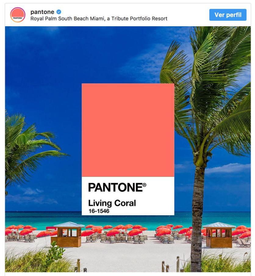 living-coral-nuevo-color-de-pantone
