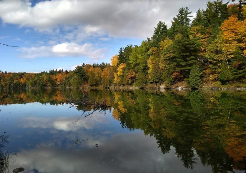 10 razones por las que debes viajar a Canadá al menos una vez en la vida  9