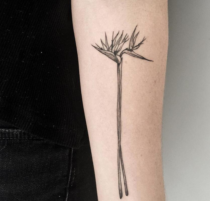 10 Ideas de tatuajes con técnica 'fine line' si buscas un diseño discreto  9