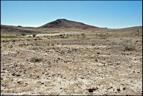 caracoles agua dulce desierto 1