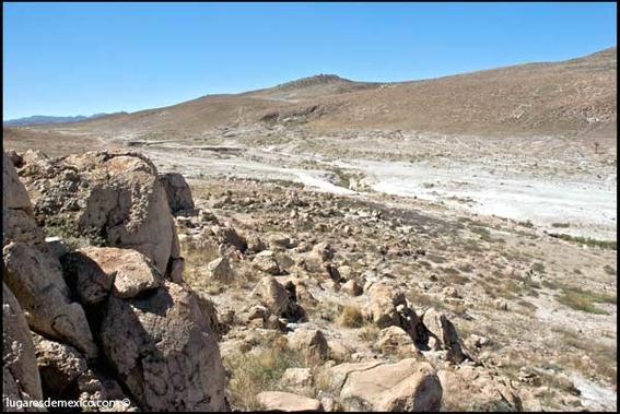caracoles agua dulce desierto 3