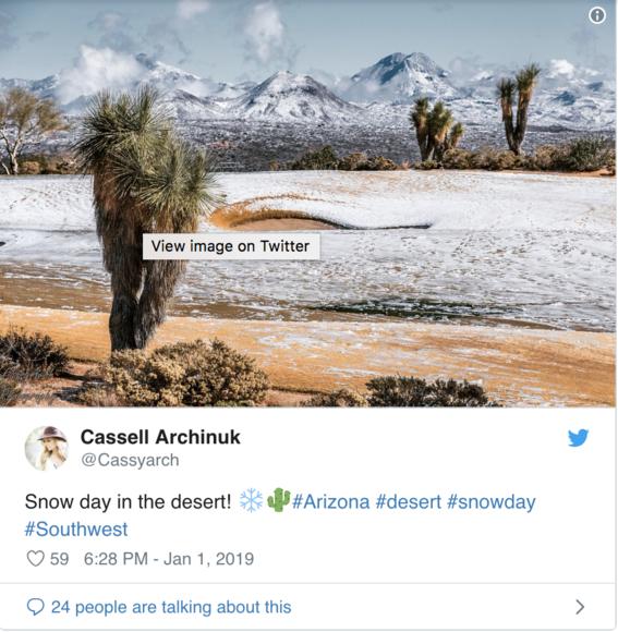 nieve en el desierto de arizona y usuarios toman fotografias 2