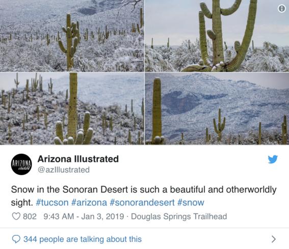 nieve en el desierto de arizona y usuarios toman fotografias 3