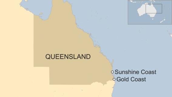 cierran playas en australia por picaduras de medusas bluebottle 1