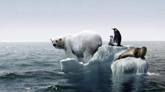 calentamiento global unesco 1