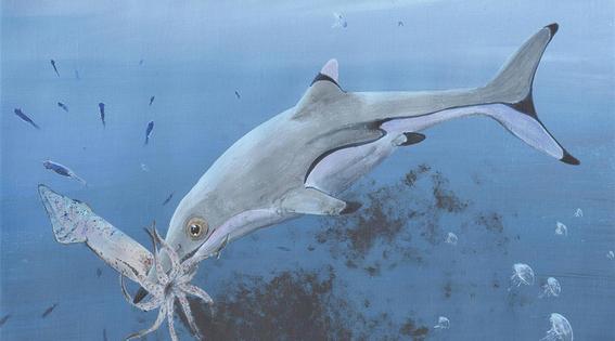 revelan como era el monstruo marino prehistorico protoichthyosaurus prostaxalis 1