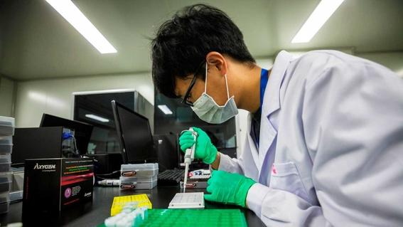 mujer gesta a otro bebe modificado geneticamente en china 2