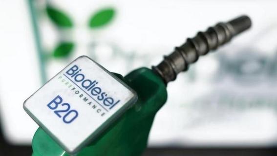cual es la diferencia entre el diesel y el biodiesel 3