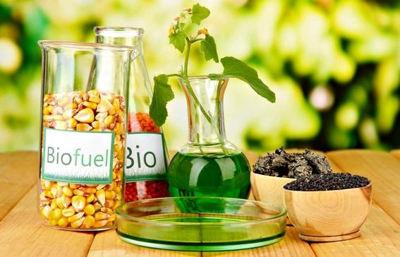 cual es la diferencia entre el diesel y el biodiesel 4