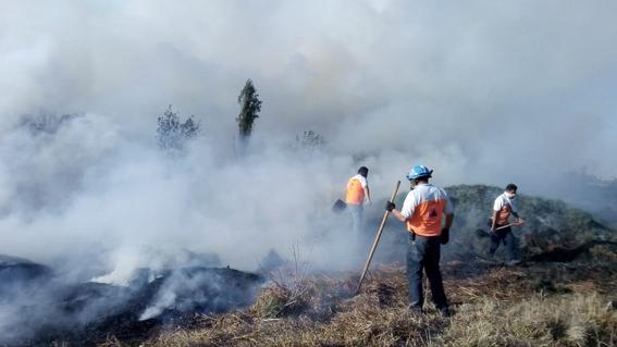 incendio en xochimilco 1