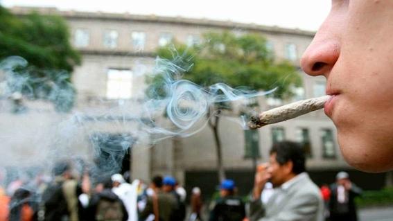 a partir de hoy puedes pedir amparo para usar marihuana con fines recreativos 1