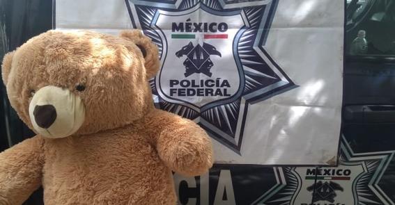 encuentran 200 mil pesos dentro de oso de peluche en jalisco 2