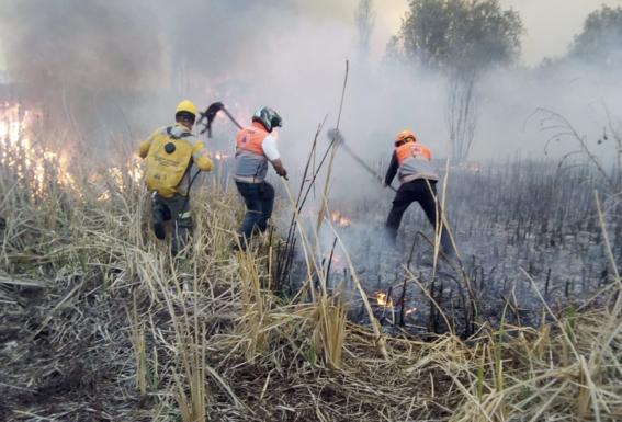 se registra aparatoso incendio en pastizales xochimilco 1