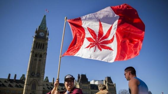 que es la jurisprudencia de la marihuana 2