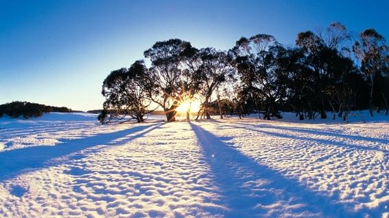 australia podria quedarse sin invierno ¡a partir del 2050 1