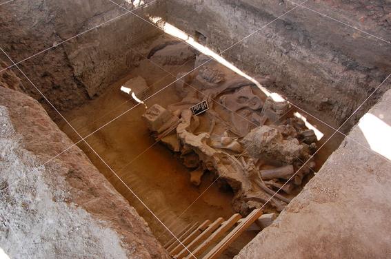 encuentran restos oseos de mamuts en tultepec 1