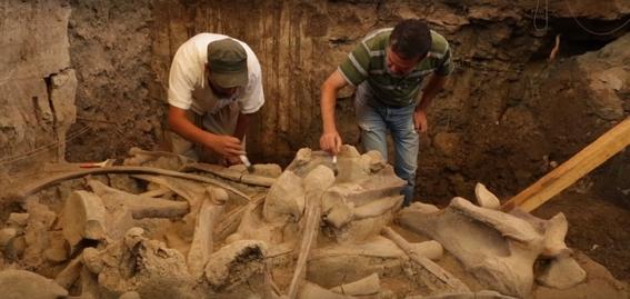 encuentran restos oseos de mamuts en tultepec 2