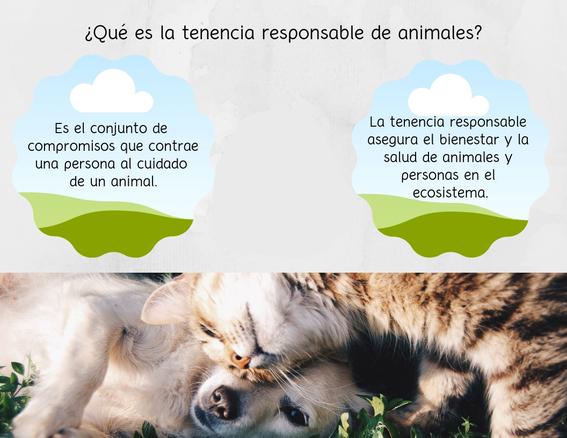 animalistas cdmx 2