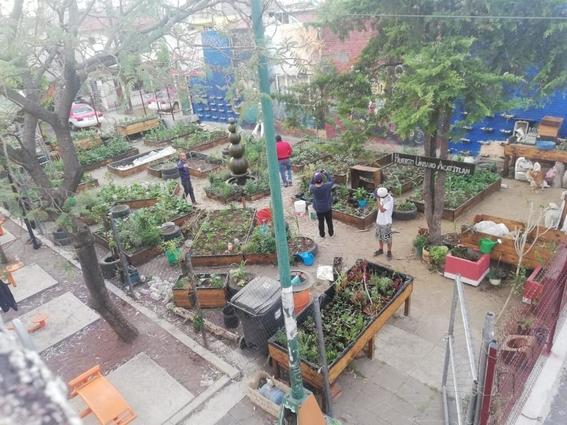 huerto urbano acatitla 1