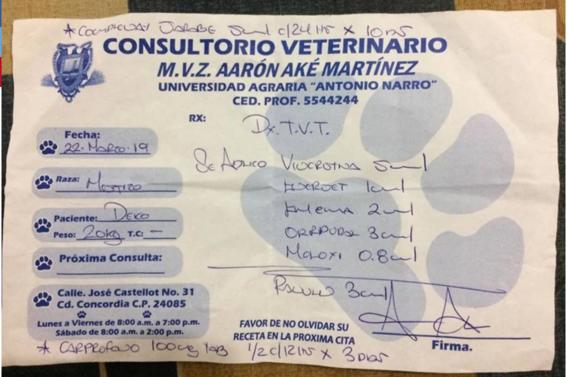 deko perrito vende postres para pagar sus  quimioterapias 2
