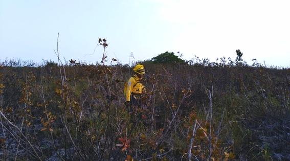 incendio de biosfera de los petenes campeche 2