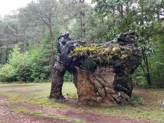 familia firma piedra del elefante una piedra milenaria en mexico 2