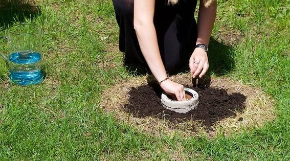 ley de funerales ecologicos washington 1