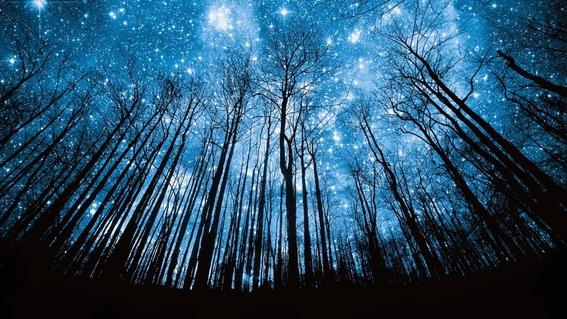 habra lluvia de estrellas relacionadas con cometa halley el fin de semana 1