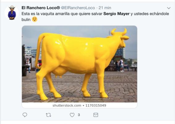 sergio mayer y la vaca amarilla 1