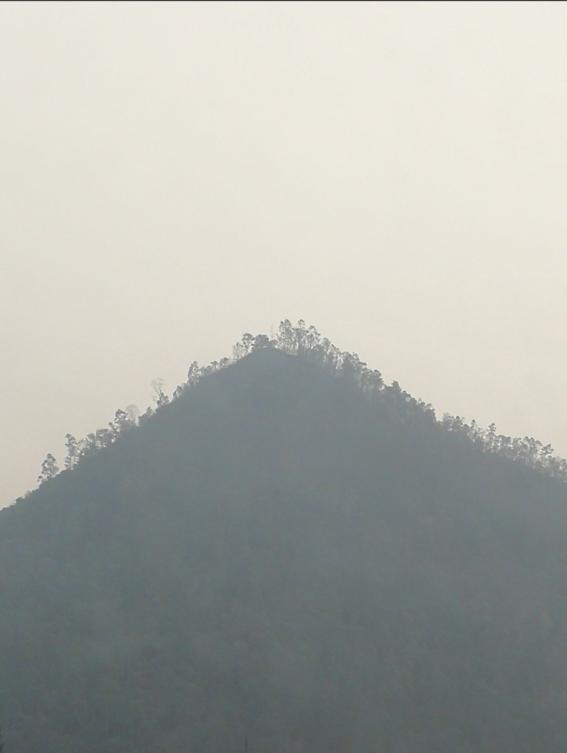 torre latino y la contaminacion 9