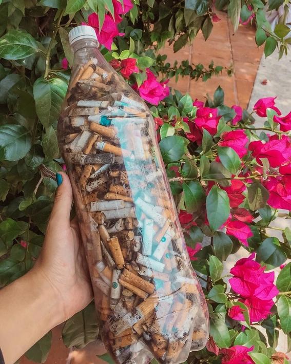 crean colillaton en yucatan para crear conciencia ambiental 2