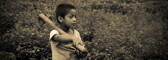trabajo infantil mexico 2