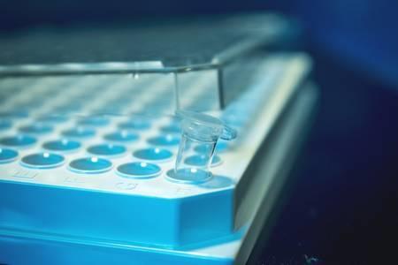 desarrollantecnicadeediciongeneticaqueevitamutaciones 2