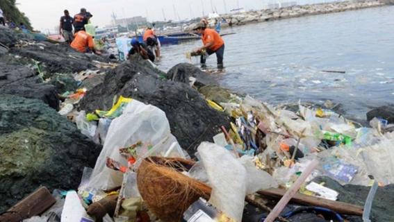 esta celebracion busca crear conciencia acerca del dano que causan las bolsas de plastico de un solo uso al medio ambiente ¡unete a la celebraci 2